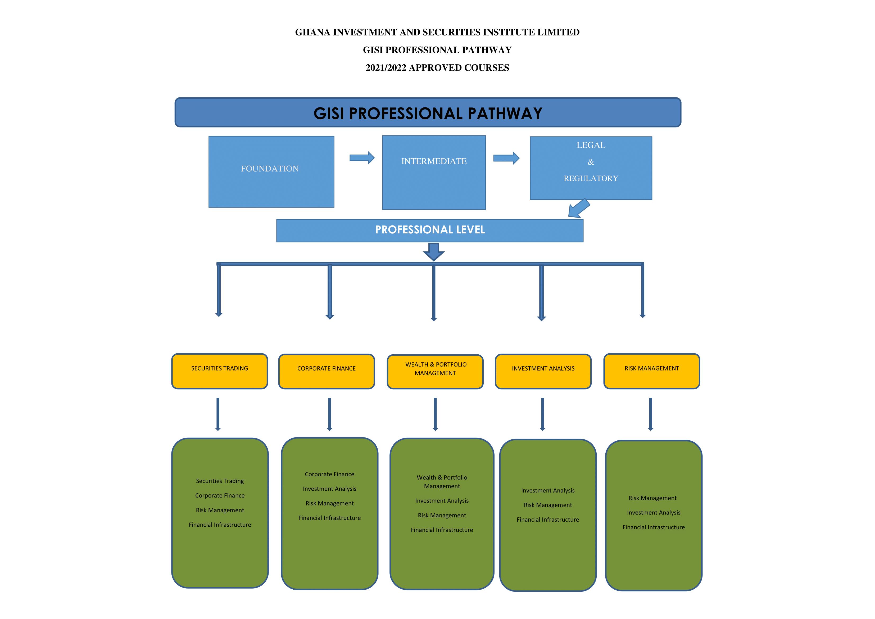 GISI Professional Pathway